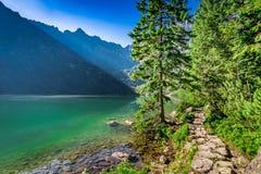 Cudowny półmrok przy stawem w Tatrzańskich górach, Polska zdjęcia stock