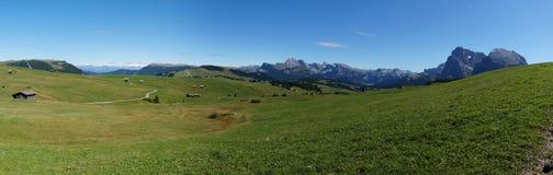 Cudowny panoramiczny widok Alp De Siusi z uderzającą langkofel grupą Obrazy Stock