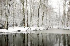 cudowny snowscape Zdjęcia Royalty Free