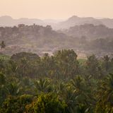 Cudowny wschód słońca nad tropikalny drzewko palmowe las Obrazy Royalty Free