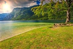 Cudowny wysokogórski krajobraz, Jeziorny Bohinj, Slovenia, Europa Fotografia Stock