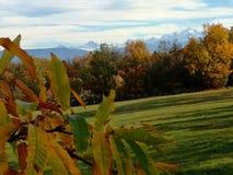 Cudowny Złoty jesień krajobraz zdjęcia stock