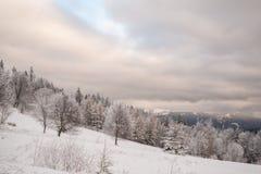 Cudowny zima krajobraz w pięknym Bavaria obraz royalty free