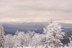 Cudowny zima krajobraz w pięknym Bavaria zdjęcie royalty free