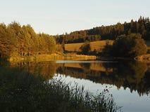 Cudy natura i jasny jezioro który odbija świetlistość, royalty ilustracja