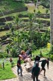 Cudzoziemski turystyczny chlanie w irlandczyka polu Bali wyspa fotografia stock