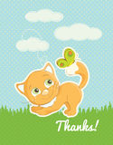 Cute Kitten Thank you standard postcard Royalty Free Stock Photography
