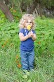 Cueillette de fleur Images libres de droits