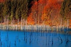 Cuejdel湖 免版税库存图片