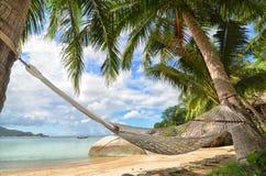 Cuelgue la ejecución de una hamaca entre las palmeras en la playa arenosa y la costa de mar Fotografía de archivo