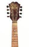 Cuello de la mandolina Fotos de archivo libres de regalías