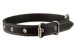Cuello de perro de cuero negro Foto de archivo
