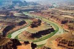 Cuello del ganso en el río de Colorado imágenes de archivo libres de regalías