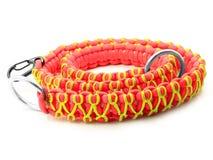 Cuello para el perro - Paracord Fotos de archivo libres de regalías