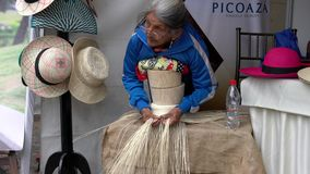 Cuenca, Ecuador - 20181003 - Cuenca Independence Day Festival - Indigenous Woman Shows How to Make Panama Hat. stock footage