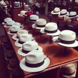 Cuenca Panamski kapelusz Fotografia Royalty Free