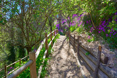 Cuenca spring forest in Canete wooden fence Royalty Free Stock Images