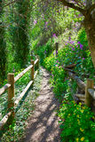 Cuenca spring forest in Canete wooden fence Stock Photo