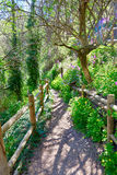Cuenca spring forest in Canete wooden fence Royalty Free Stock Photos