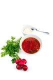 Cuenco blanco de la sopa - borsch con el rábano y el pan del perejil Fotografía de archivo libre de regalías
