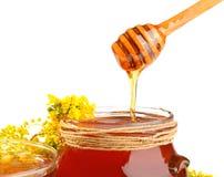 Cuenco con la miel Imagen de archivo libre de regalías