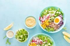Cuenco de Buda con el huevo hervido, el arroz y la ensalada vegetal de las semillas frescas de la lechuga, del rábano, del pepin imagen de archivo