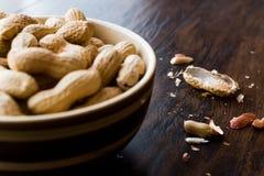 Cuenco de cacahuetes asados salados en seco en Shell Imagen de archivo libre de regalías