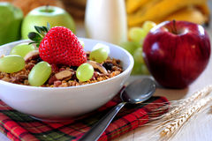 Cuenco de cereal Imagen de archivo libre de regalías