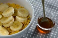 Cuenco de cereales de la fruta con la abeja de la miel Fotos de archivo
