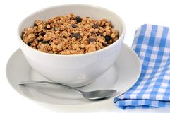 Cuenco de cereales sin leche fotos de archivo libres de regalías