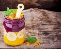 Cuenco de desayuno dos capas del smoothie del mango con Fotografía de archivo libre de regalías