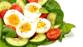 Cuenco de ensalada fresco del huevo y del tomate Imagen de archivo libre de regalías