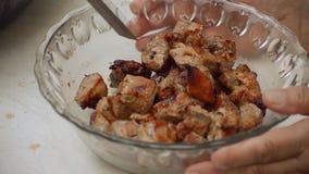 Cuenco de ensalada de la carne del kebab de Shashlik almacen de metraje de vídeo