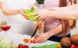 Cuenco de ensalada sano del hábito de la nutrición de la forma de vida de las mujeres imagen de archivo libre de regalías