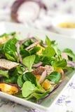 Cuenco de ensalada verde fresca Imagen de archivo libre de regalías