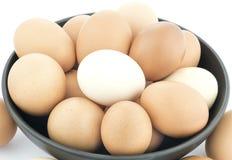 Cuenco de huevos orgánicos del pollo Fotografía de archivo libre de regalías