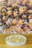 Cuenco de jalea real en cápsulas con el fondo borroso del worke Imagen de archivo