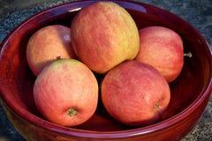 Cuenco de manzanas de cosecha propia orgánicas fotos de archivo