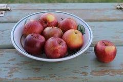 Cuenco de manzanas espartanos Fotografía de archivo libre de regalías