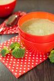 Cuenco de pimienta de chile y de sopa del bróculi Fotos de archivo