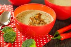 Cuenco de pimienta de chile y de sopa del bróculi Foto de archivo libre de regalías