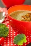 Cuenco de pimienta de chile y de sopa del bróculi Imagen de archivo libre de regalías