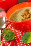Cuenco de pimienta de chile y de sopa del bróculi Fotografía de archivo libre de regalías