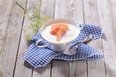 Cuenco de sopa de pescado de color salmón fresca con hinojo Imagen de archivo libre de regalías