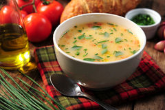 Cuenco de sopa de verduras Foto de archivo libre de regalías