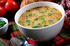 Cuenco de sopa de verduras Imagen de archivo libre de regalías