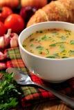 Cuenco de sopa de verduras Fotos de archivo libres de regalías
