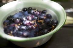 Cuenco de uvas Fotografía de archivo libre de regalías