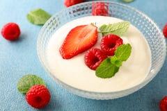 Cuenco de yogur y de fruta fotos de archivo