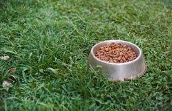 Cuenco del metal para la comida de perro Fotos de archivo libres de regalías